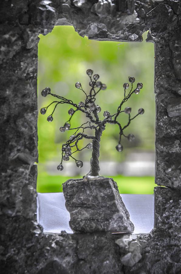 Unusual Photograph - Little Pearl Tree II by Sotiris Filippou