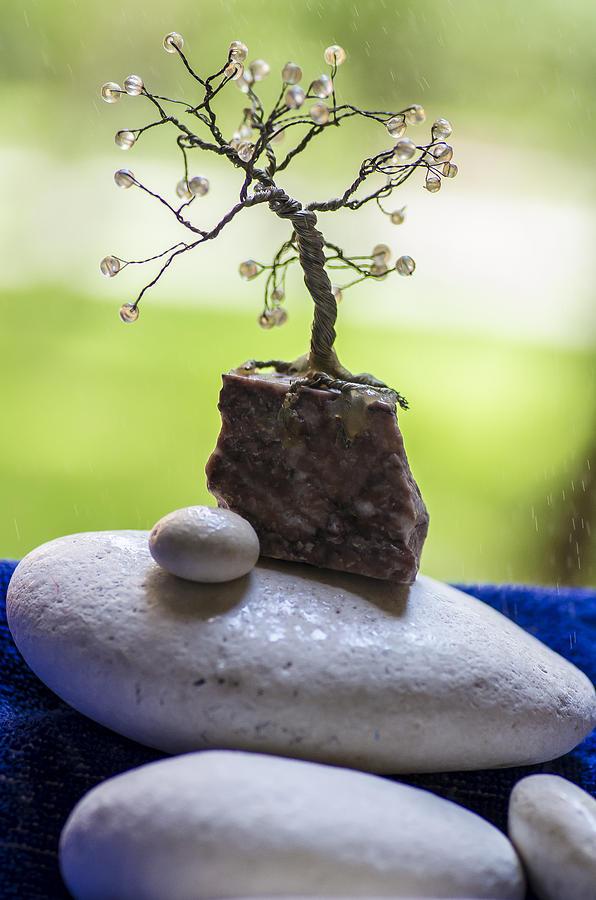 Unusual Photograph - Little Pearl Tree by Sotiris Filippou