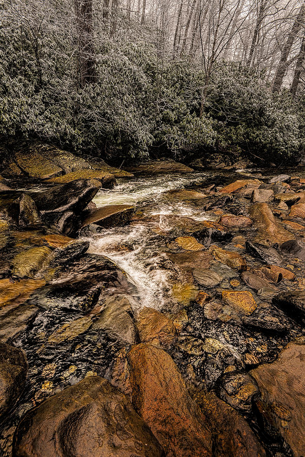 Smoky Mountains Photograph - Little Pidgeon River2 by Tom  Reed