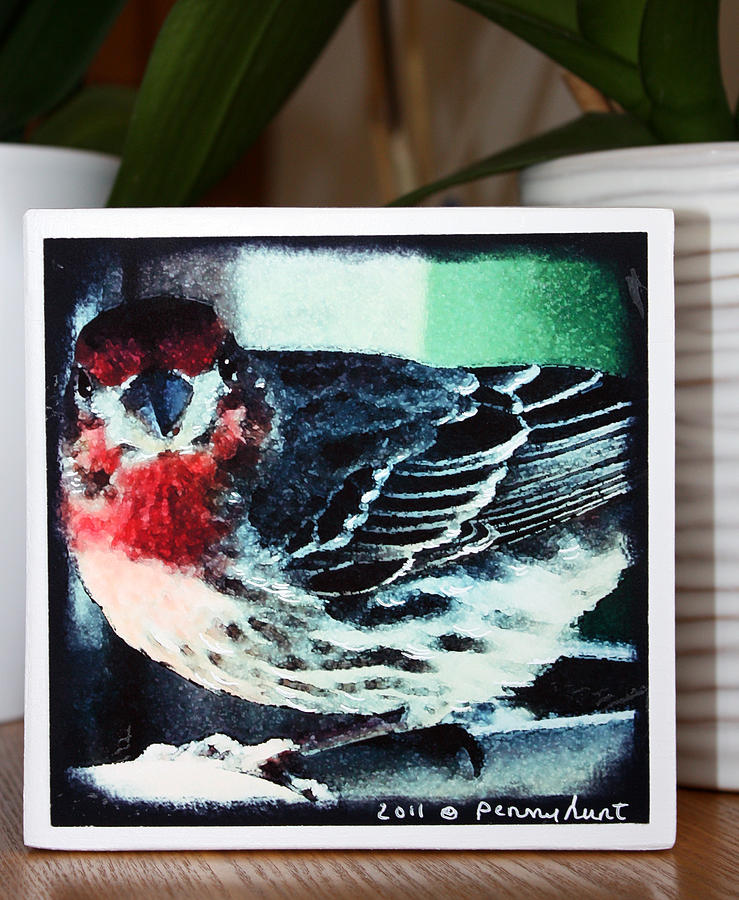 Red Finch Mixed Media - Little Red Finch Photo Block by Penny Hunt