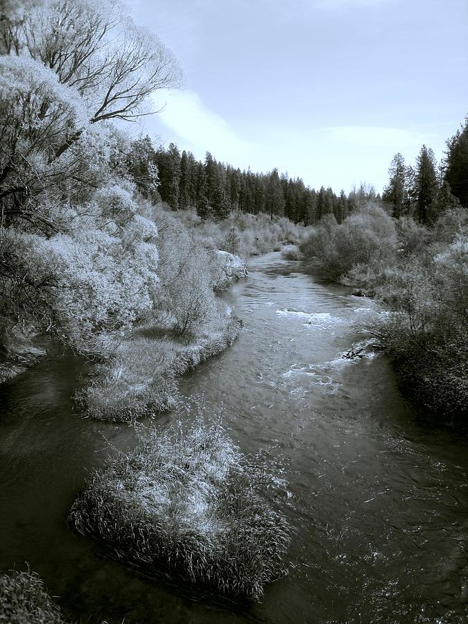 Spokane Photograph - Little Spokane River Beauty by Daniel Hagerman