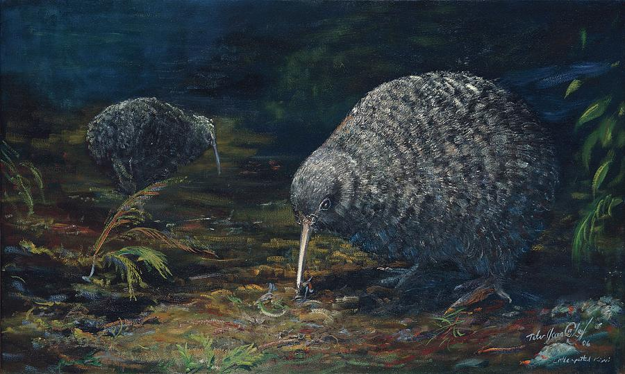 New Zealand Kiwi Painting - Little Spotted Kiwi by Peter Jean Caley