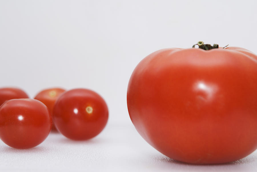 Close Up Photograph - Little Tomatoes And One Big Tomato by Marlene Ford