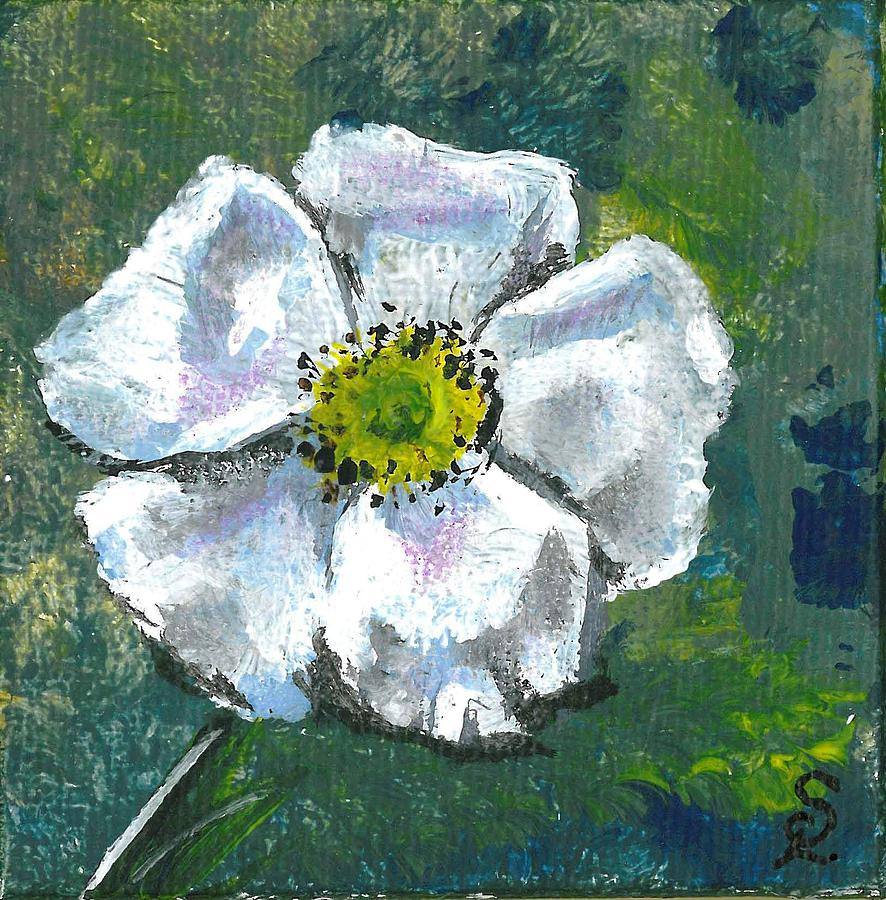 Little White Flower Painting By Sarah Lowe