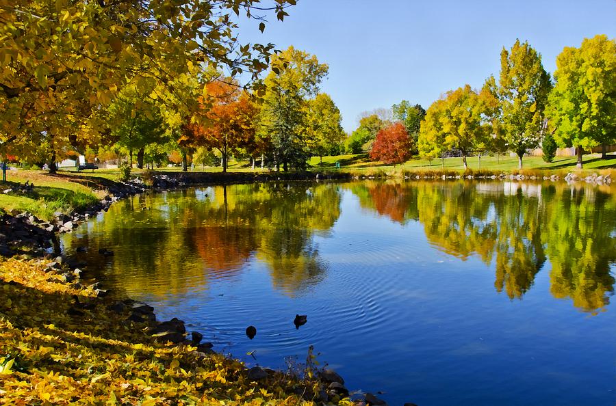Colorado Photograph - Littleton Pond 1 by Angelina Tamez