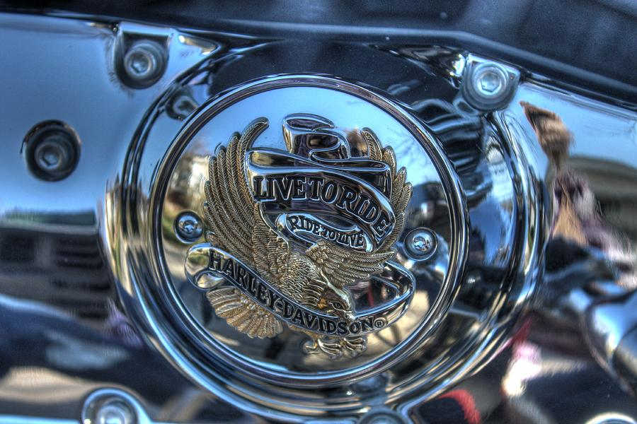 Harley Photograph - Live To Ride by Jane Linders