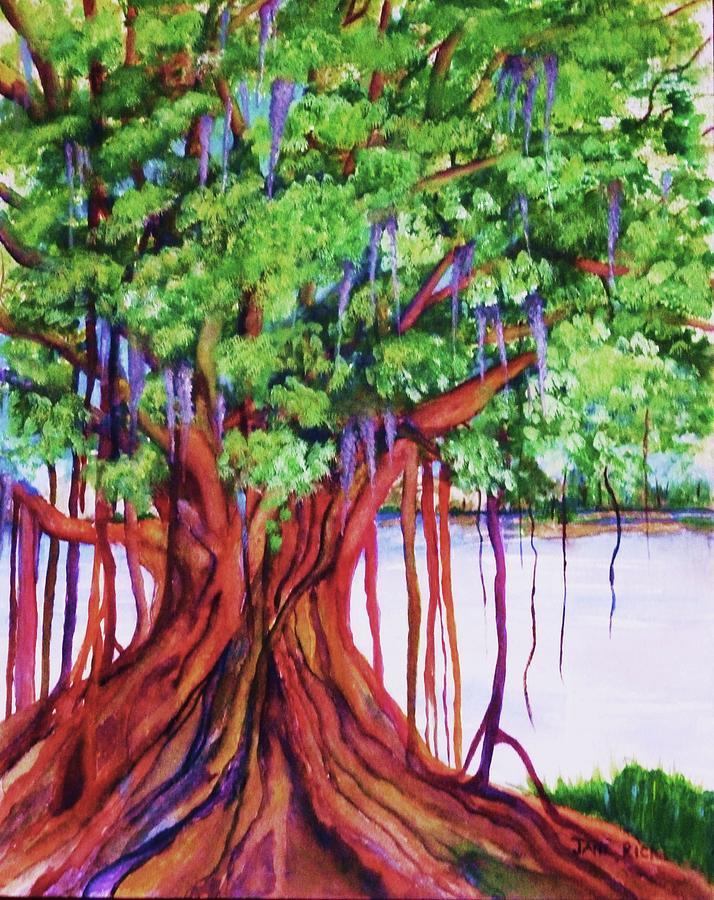 Living Banyan Tree Painting By Jane Ricker