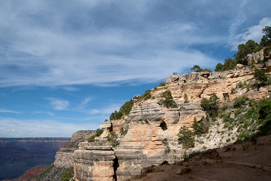 Grand Canyon Photograph - Living On The Ledge by Nickaleen Neff