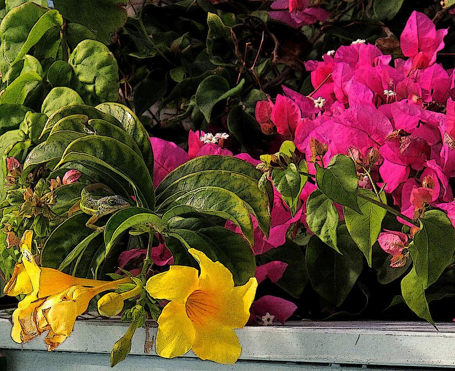 Lizard Photograph - Lizard Among The Flowers by Ian  MacDonald