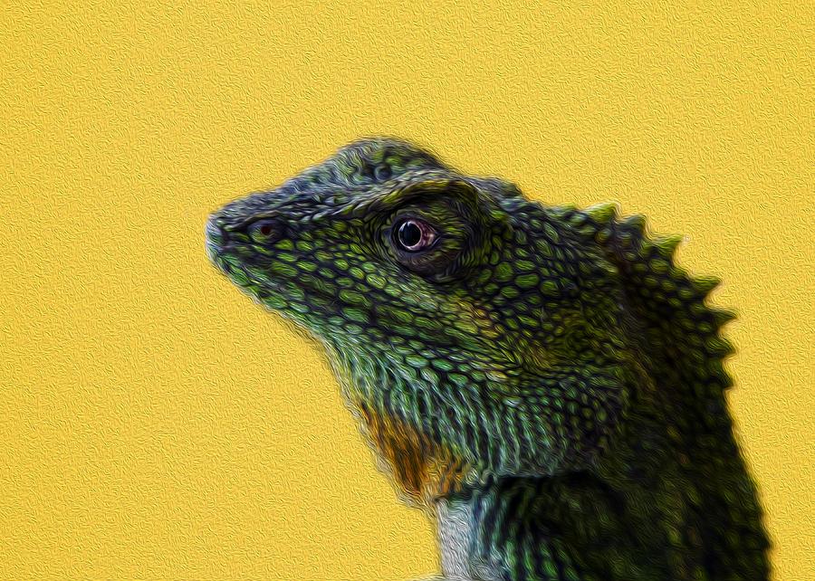 Green Photograph - Lizard by Karen Walzer