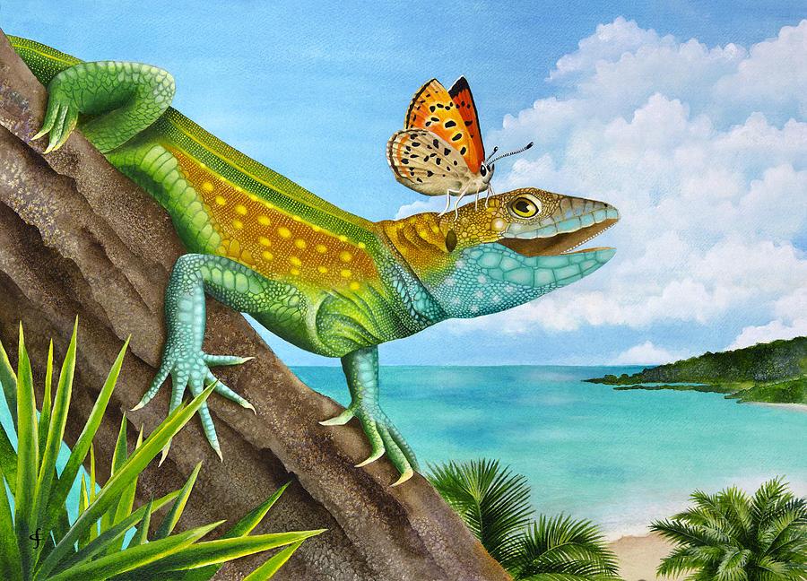 Carolyn Steele Photograph - Lizard Landing by Carolyn Steele