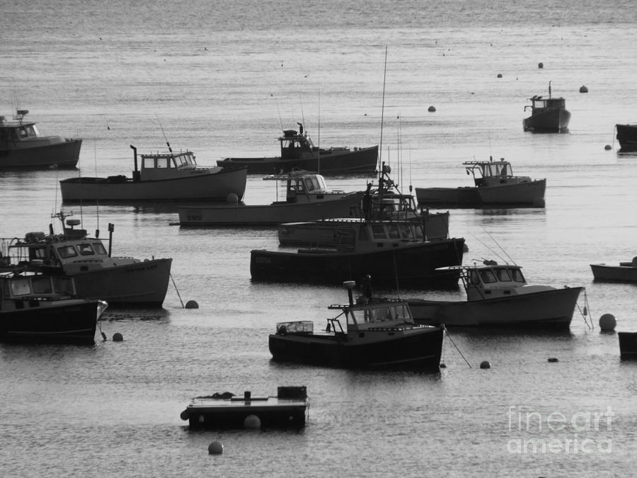 Lobster Photograph - Lobster Fleet Bw by Christine Stack