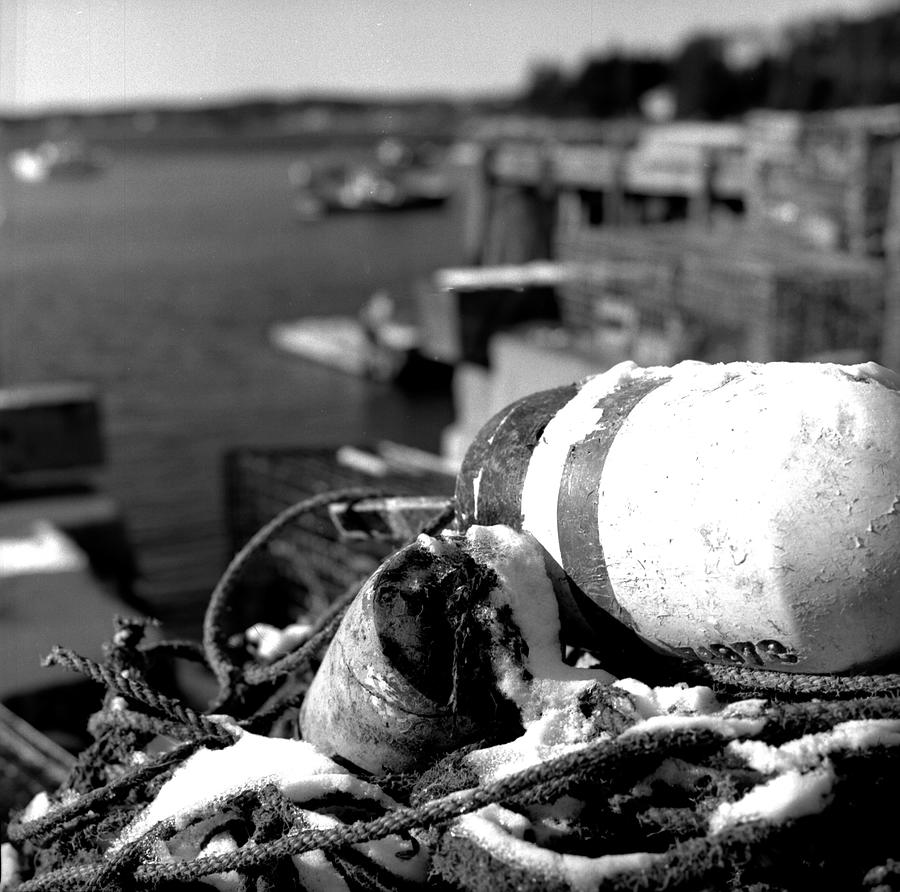 Black And White Photograph - Lobster Traps 07 by Timothy Bischoff