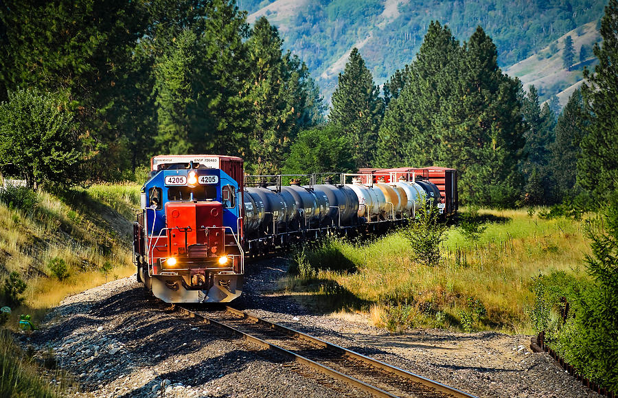 Train Photograph - Local Train by Robert Bales