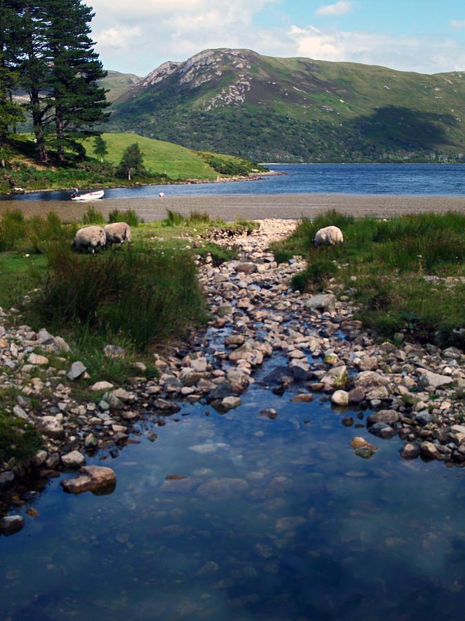 Loch Photograph - Loch Ba by Steve Watson