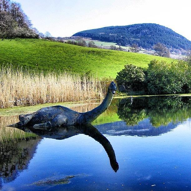 Monster Photograph - Loch Ness - Scotland by Luisa Azzolini