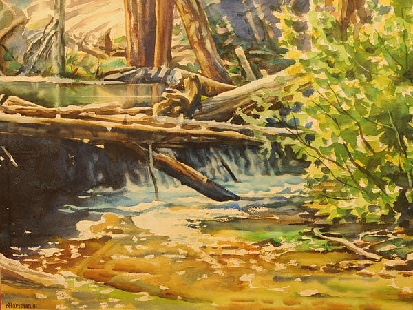 Stream Painting - Log Jam by Ken Hartman