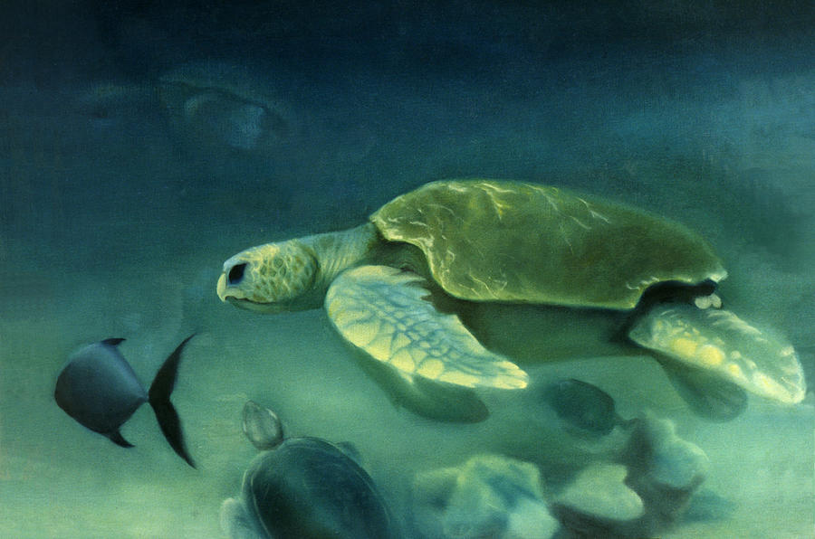 Loggerhead Turtles Painting - Loggerhead Turtle by Anni Adkins