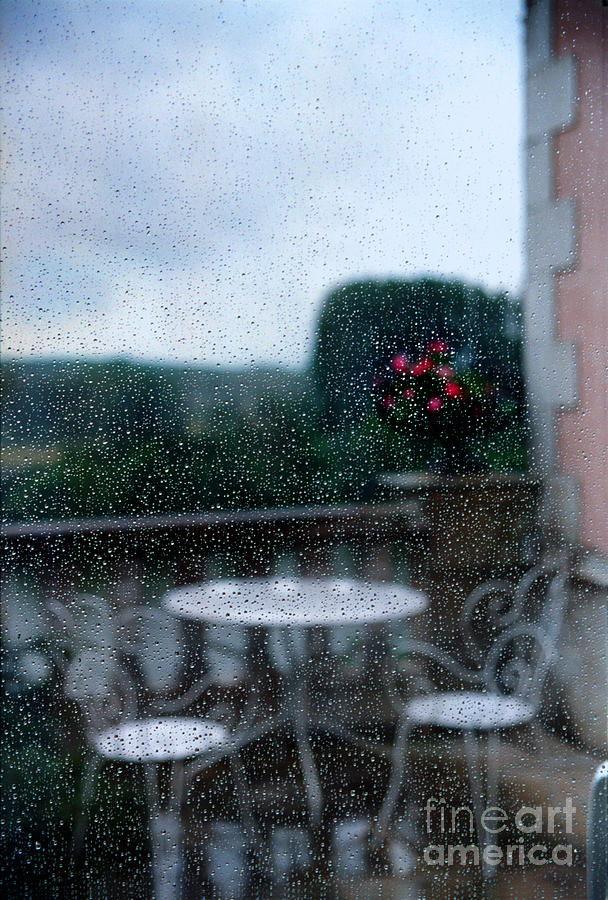 Loire Valley View by Madeline Ellis