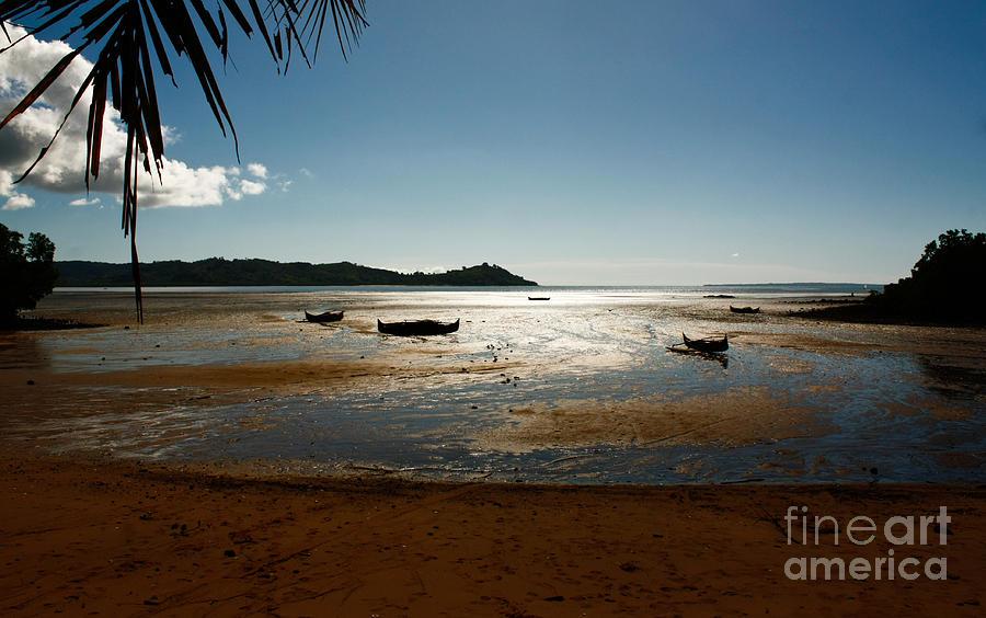 Madagascar Photograph - Lokobe by Marco Affini