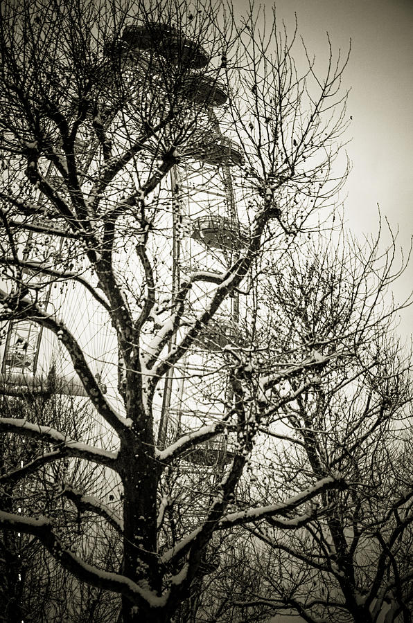 London Eye Photograph - London Eye Through Snowy Trees by Lenny Carter