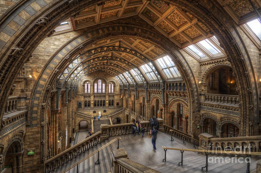 London Natural History Museum Photograph - London Natural History Museum by Yhun Suarez