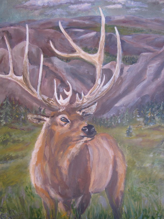 Elk Mountains Painting - Lone Elk by Caroline Owen-Doar
