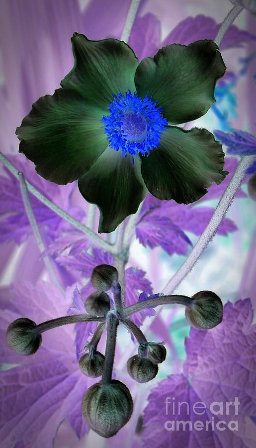 Lone Flower 1 Mixed Media - Lone Flower 1 by Chalet Roome-Rigdon