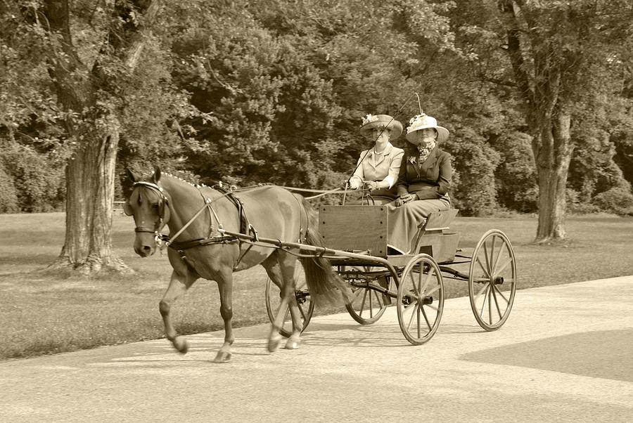Lone Four Wheel Cart Photograph - Lone Four Wheel Cart by Wayne Sheeler