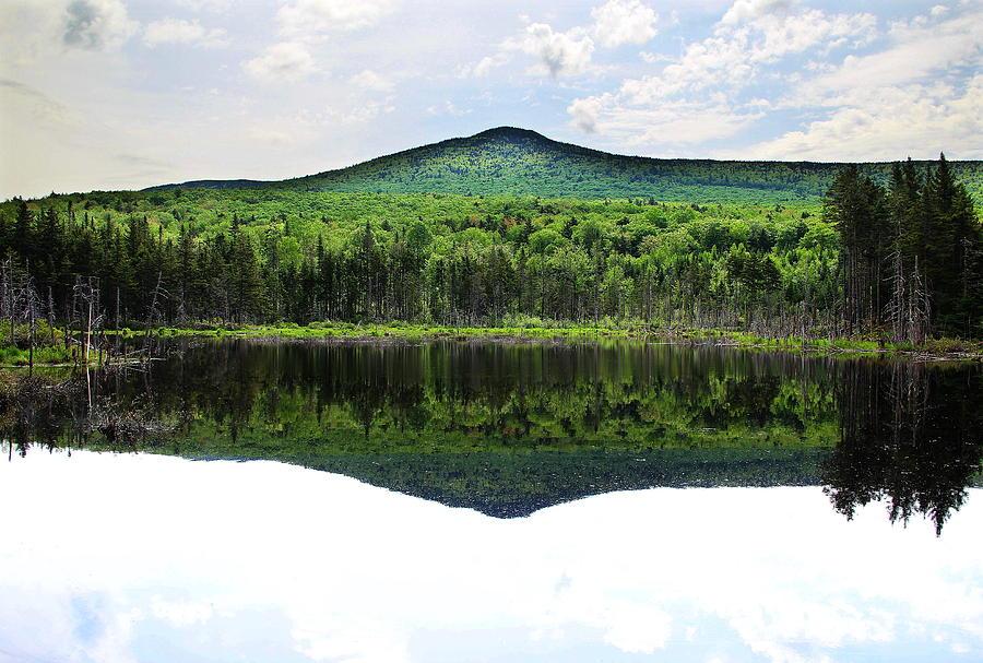 Adams Photograph - Lone Lake by Andrea Galiffi