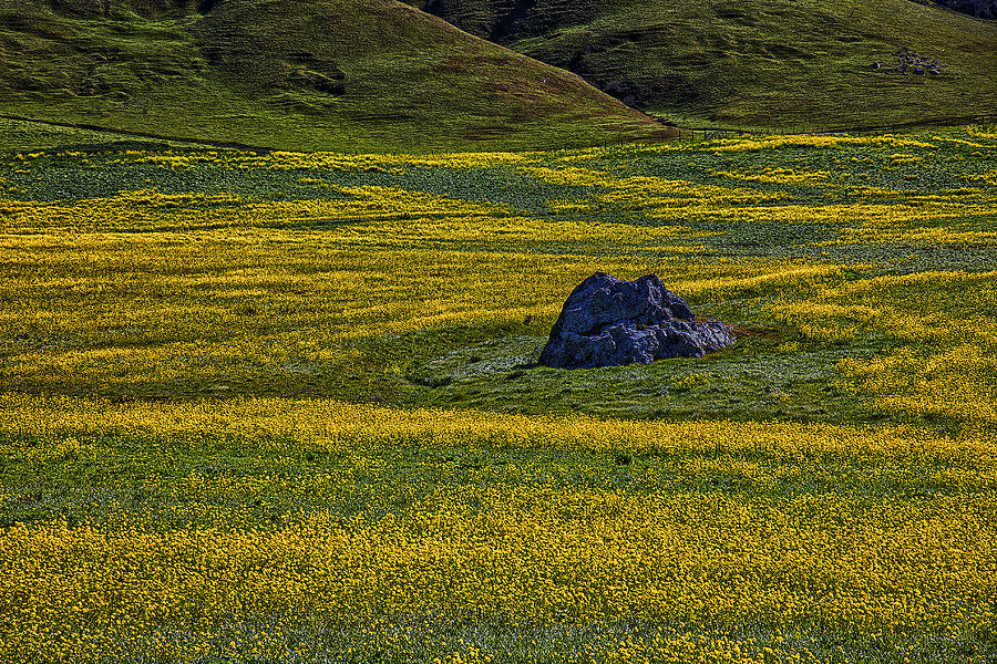 Rock Photograph - Lone Stone by Garry Gay