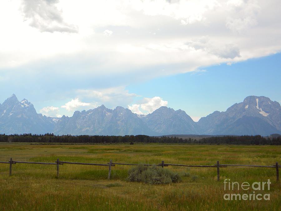 Prairie Photograph - Lone Wilderness by Kim Petitt