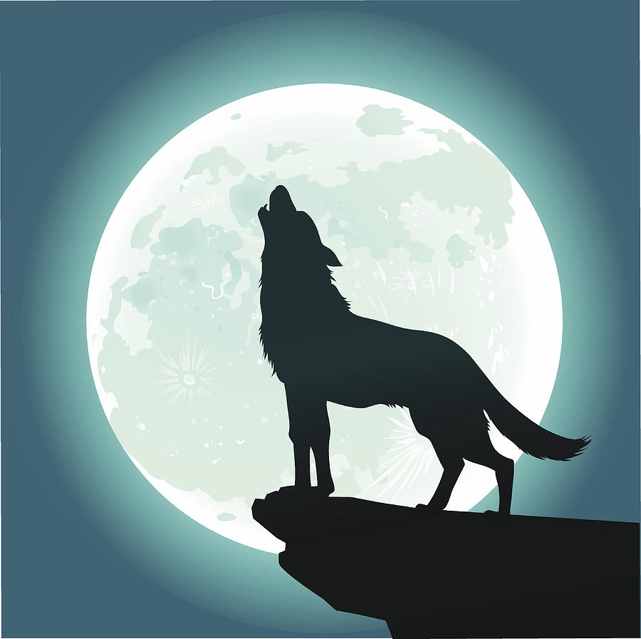 Lone Wolf Howling At The Moon By VasjaKoman