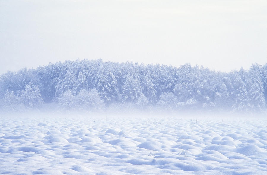 Calm Photograph - Loneliness In Winter by Patrick Kessler