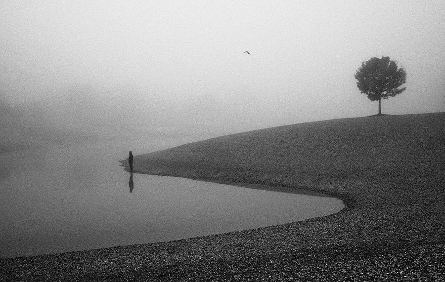Alone Photograph - Loneliness by Matija Posavec