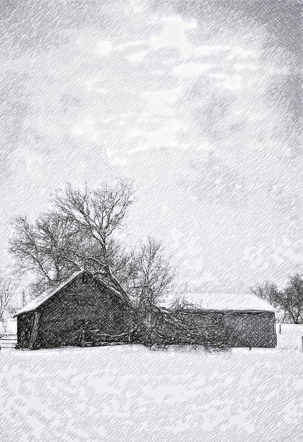 Snow Photograph - Loneliness Sketch by Steve Harrington