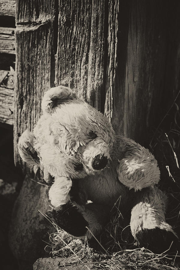 Lonely And Sad Teddy Bear Photograph By Christian Lagereek
