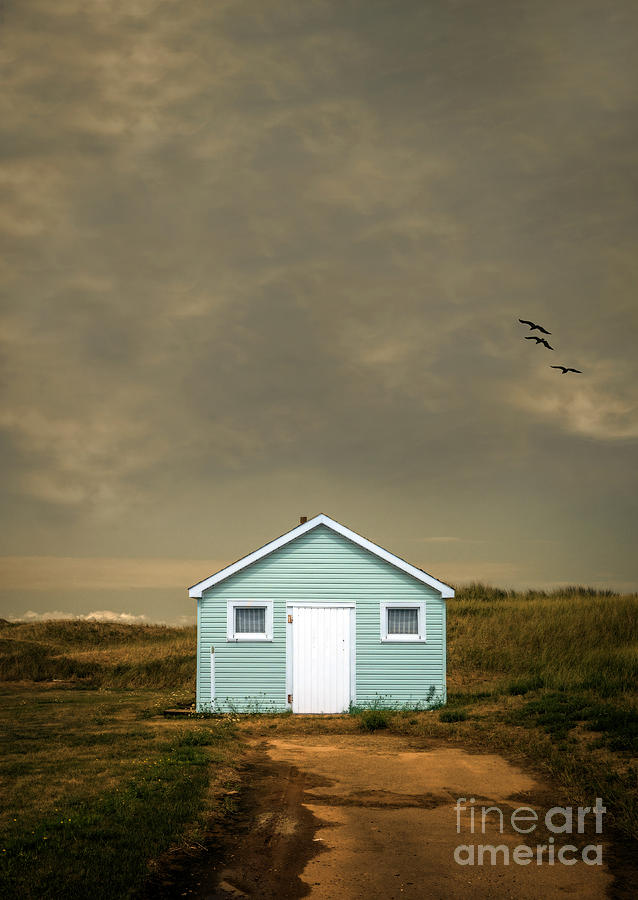 Beach Photograph - Lonely Beach Shack by Edward Fielding