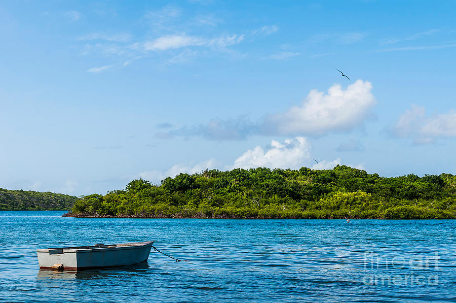 Boat Photograph - Lonely Boat by Luis Alvarenga