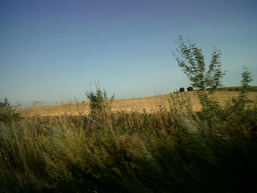 Landscape Photograph - Lonely Field by Andreea Alecu