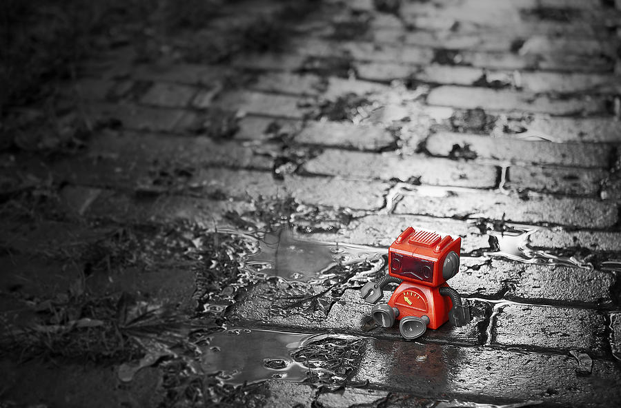 Robot Photograph - Lonely Little Robot by Scott Norris