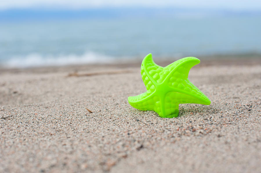 Starfish Photograph - Lonely Starfish  by Sofia Walker