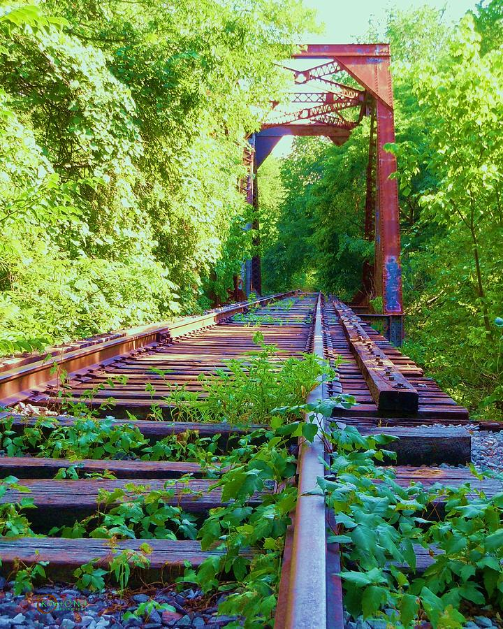 Railroad Photograph - Lonesome Railroad #5 by Robert ONeil