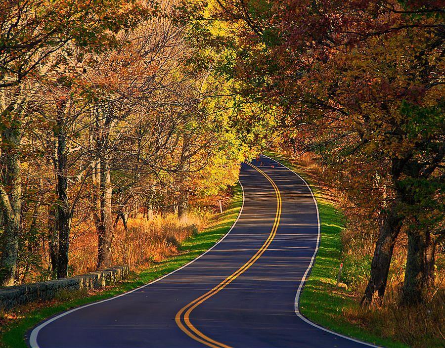 Long And Winding Road Photograph by Kathi Isserman