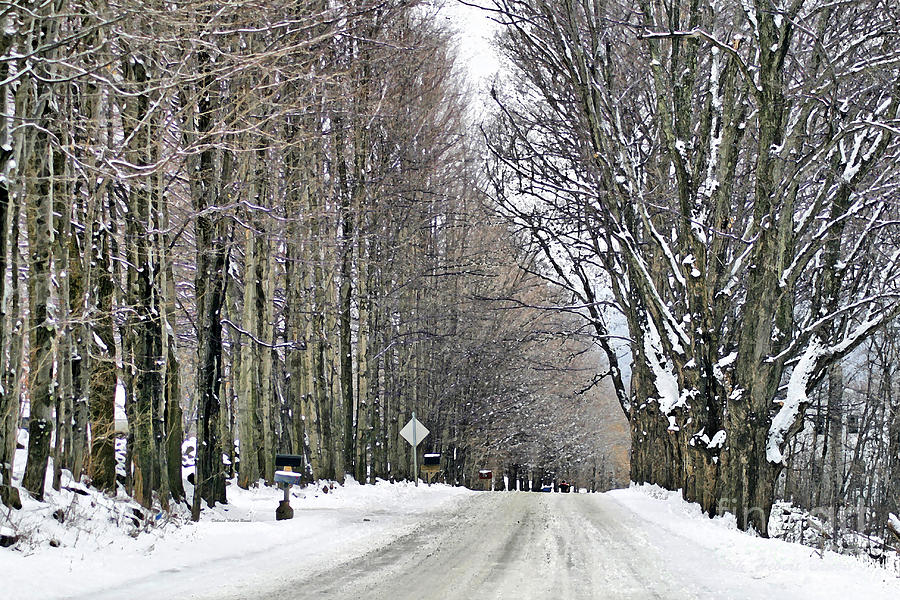 Winter Photograph - Long Country Road by Deborah Benoit