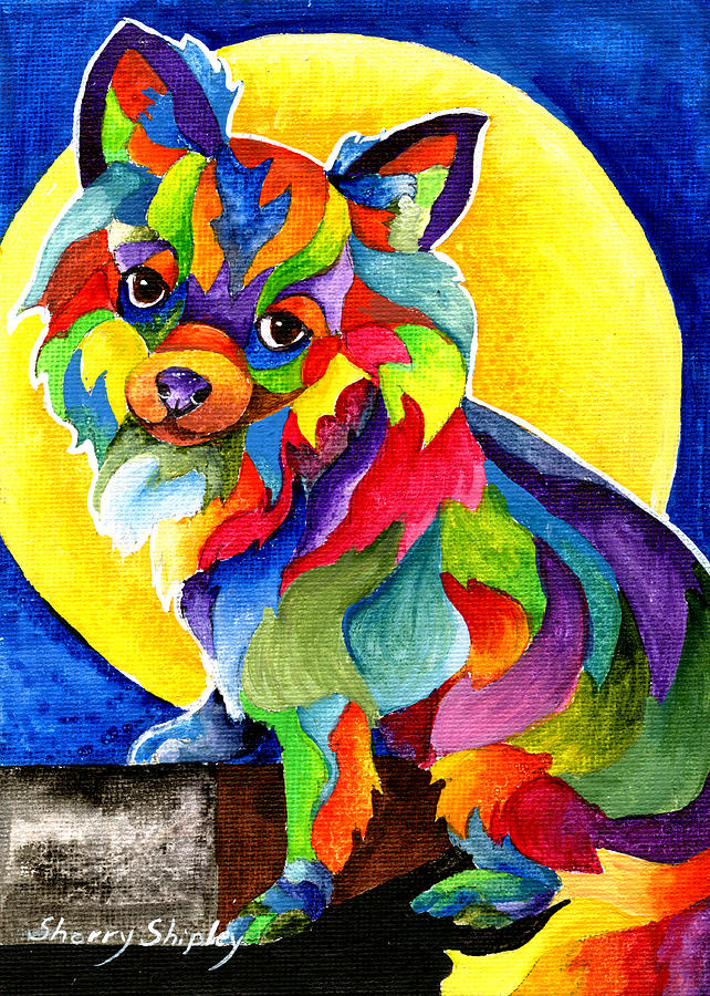 Chihuahua Painting - Long Haired Chihuahua by Sherry Shipley