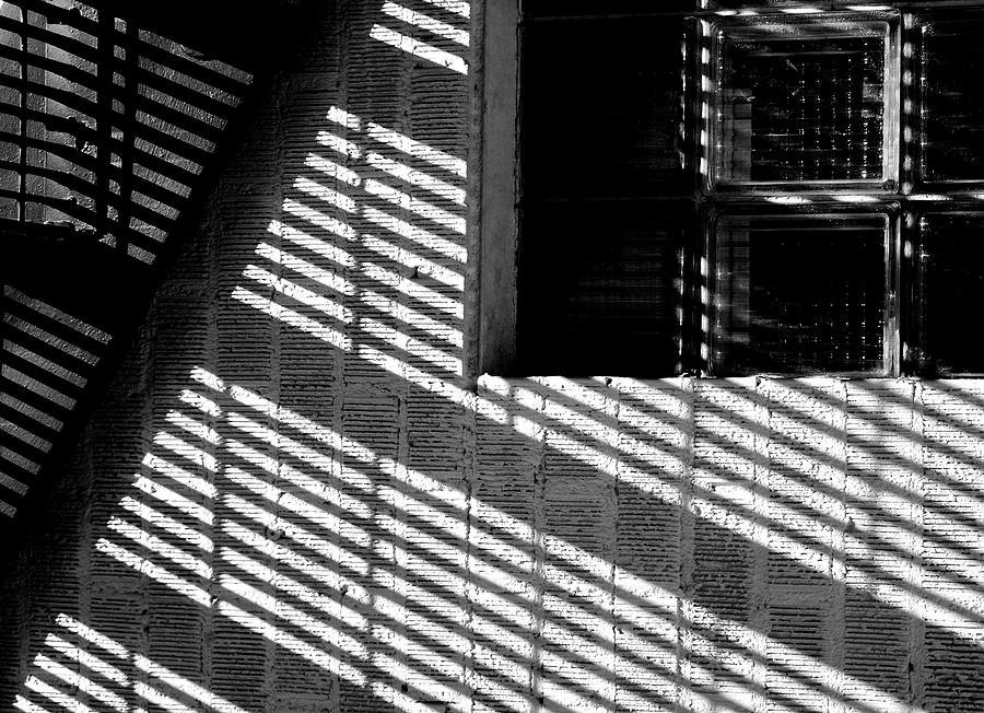 Arts Photograph - Long Shadows by Steven Milner