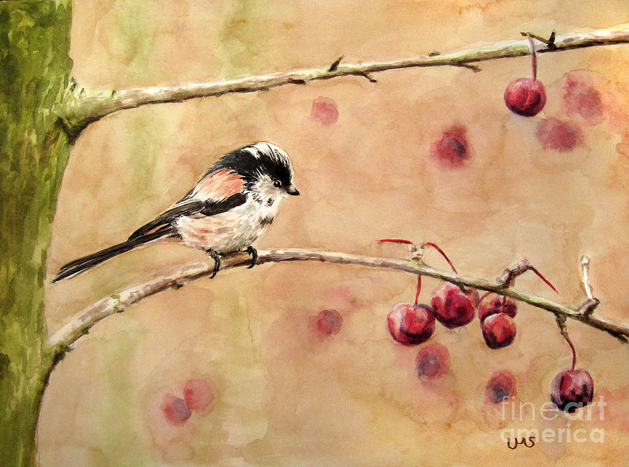 Long-tailed Tit by Ulrike Miesen-Schuermann