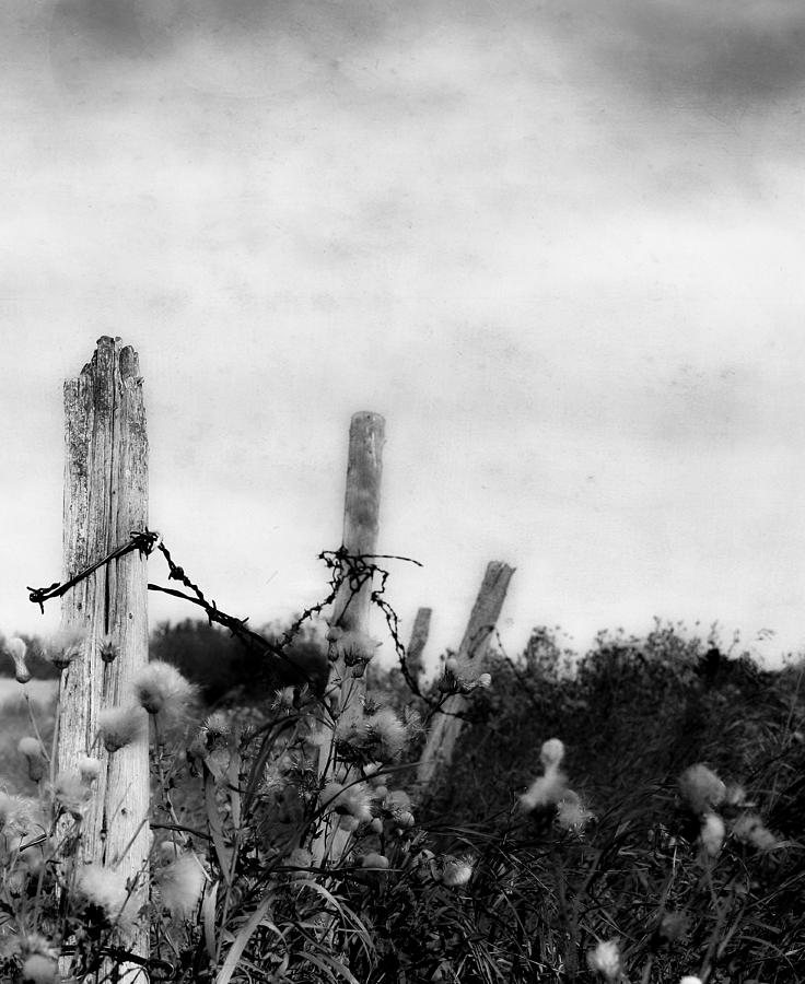 Fence Photograph - Long Way To Touch  by The Artist Project