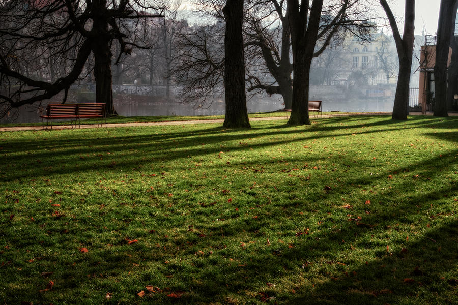 Joan Carroll Photograph - Long Winter Shadows by Joan Carroll